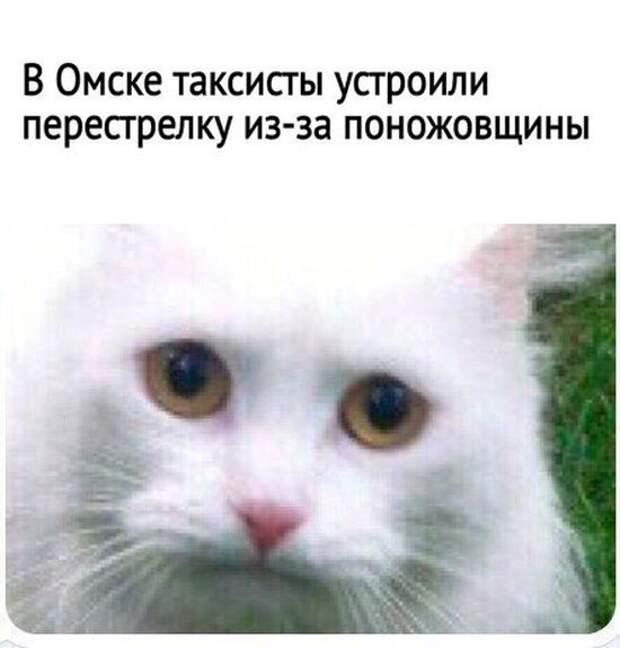 1481837813_110