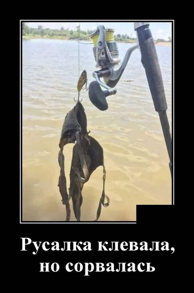 Демотиватор про рыбалку и русалок