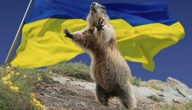 День национального украинского сурка