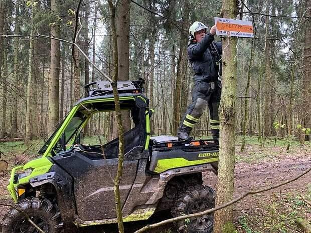 """Как выйти из леса, если заблудился, рассказал директор поискового отряда """"ЛизаАлерт"""""""