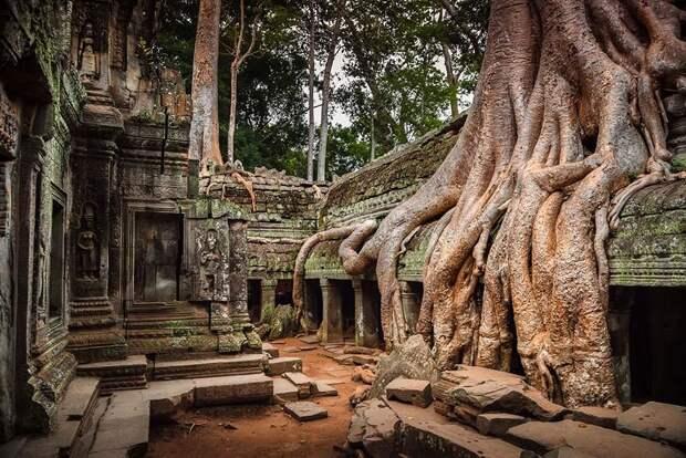 21 пример, когда природа победила цивилизацию