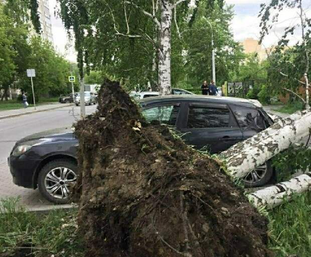 Из-за урагана в Свердловской области погибли четыре человека