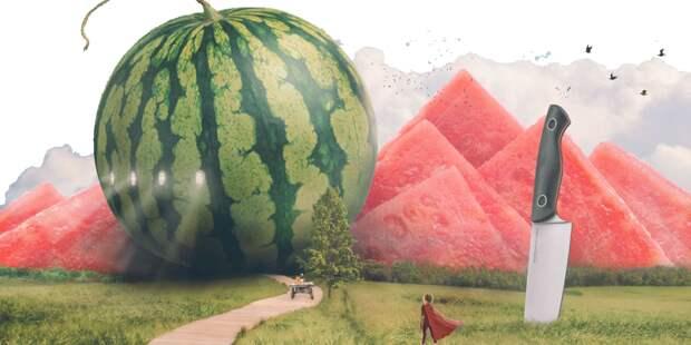 Ложная ягода: в чем опасность ранних арбузов
