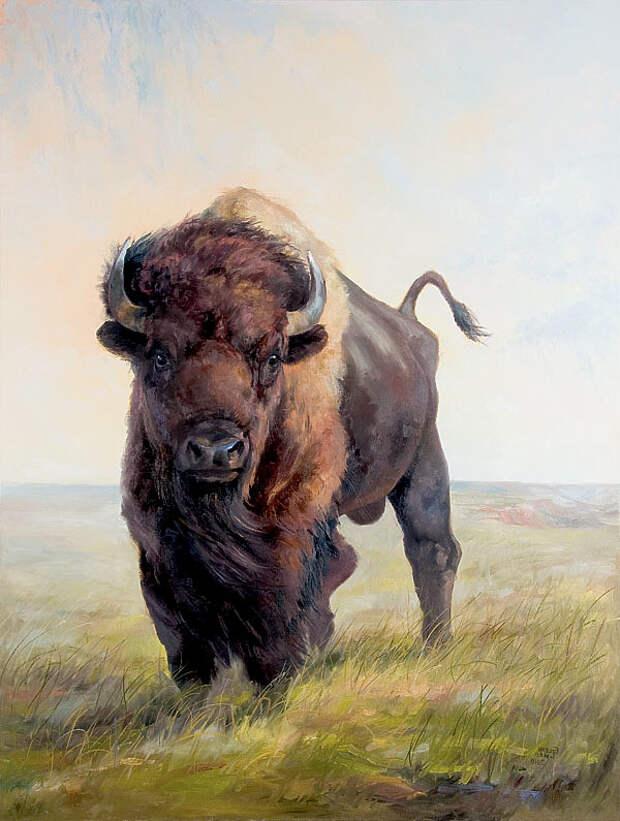 Истребитель бизонов