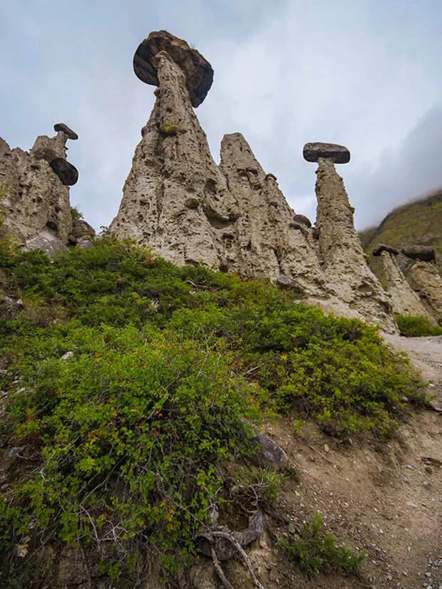 Каменные грибы Горный Алтай, Пейзаж, Путешествия, Фототур, Дикий туризм, Фотография, Отдых в России, Длиннопост