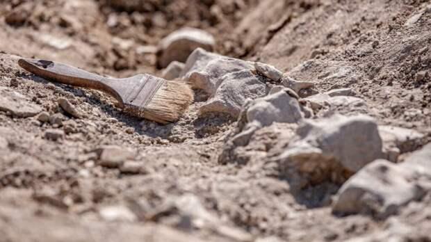 В Мексике закопают археологическую находку из-за пандемии коронавируса