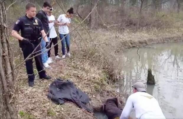 На берегу реки мужчина заметил дурачащихся бобров, но потом понял, что это не бобры...