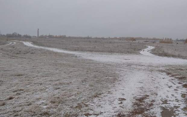В Рязанской области выпал первый снег