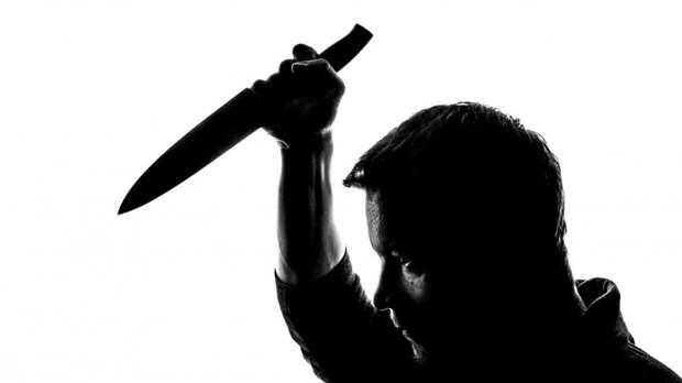Мужчина устроил смертельную поножовщину в гостях под Ломоносовом