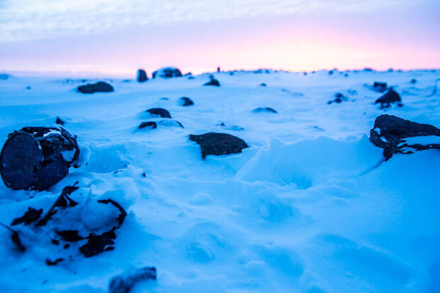 Покрытые льдом тайны рейха: что нацисты искали в советской Арктике