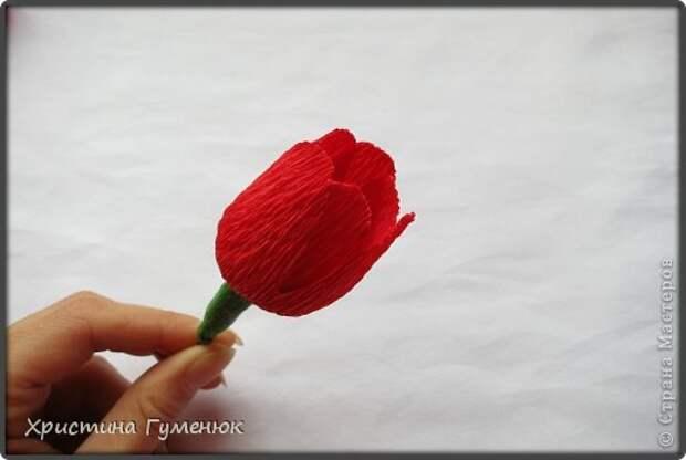 Мастер-класс Свит-дизайн Бумагопластика Цветы  как я их делаю  Бумага гофрированная фото 8
