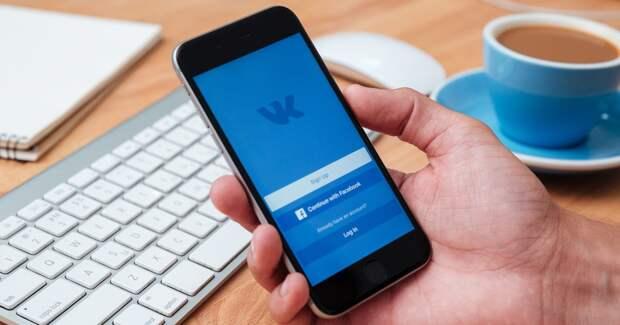 Пользователи «ВКонтакте» в этом году чаще всего покупали одежду от звезд