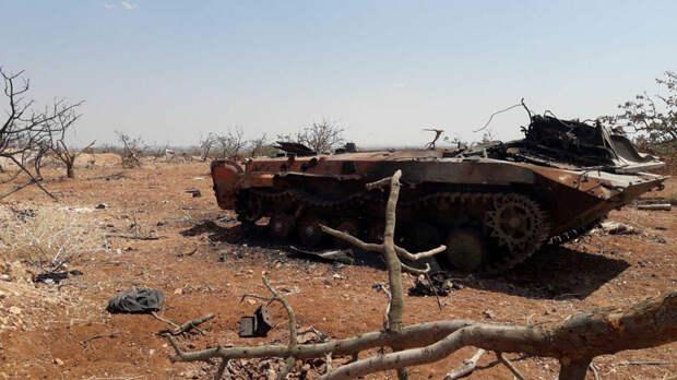 Россия в СБ ООН назвала число боевиков и сторонников ИГ в Сирии