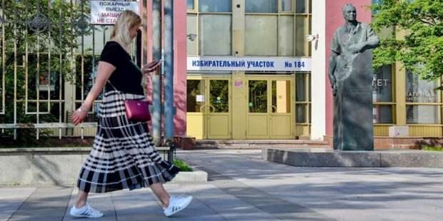 Эксперт отметила открытость и прозрачность голосования по конституции в Москве. Фото: mos.ru