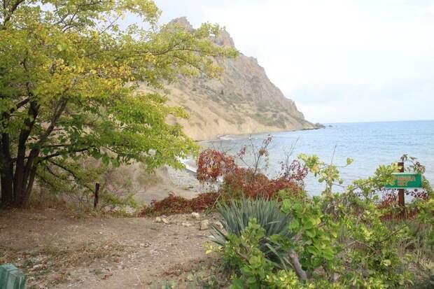 Погода в Крыму на 24 сентября: зюйд-вест и тепло до +20