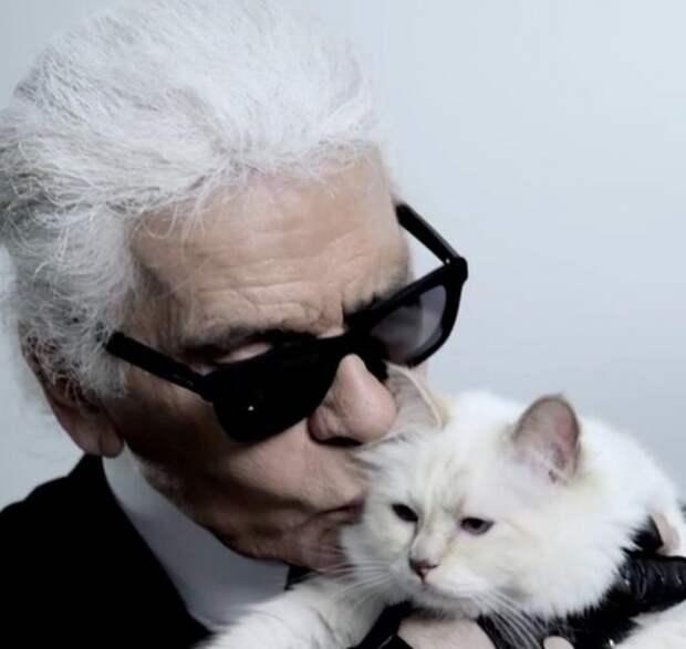 Как живет кошка Карла Лагерфельда, которой он завещал 200 млн долларов