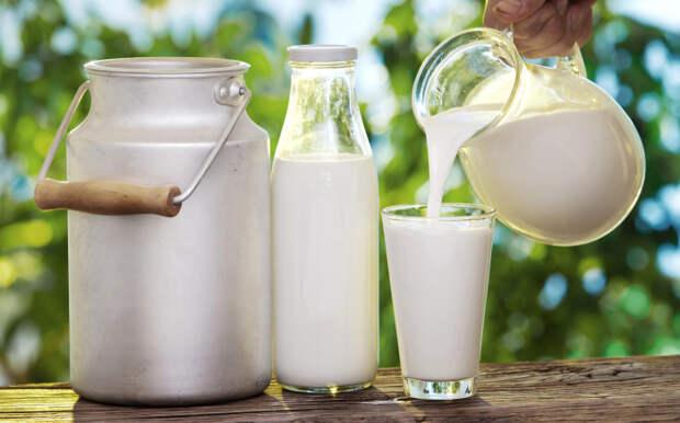 Приготовления лучше взять домашнее молоко, можно и пастеризованное / Фото: dolgo-jv.ru