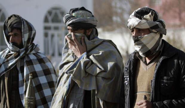 Противоречия и компромиссы: талибы* столкнулись с серьезной дилеммой