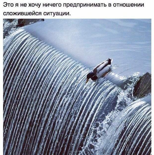 Подборка прикольных фото №1077 (103 фото)
