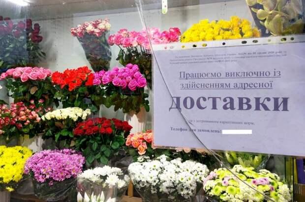 «Звериное нутро у людей». Как на Украине кошмарят за русский язык
