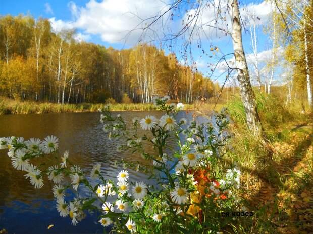 Красоты России (#560)
