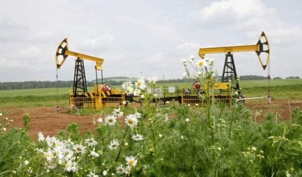 Роснефть иBPбудут сотрудничать вобласти углеродного менеджмента