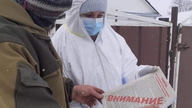 ВРостовской области ввели карантин поптичьему гриппу на«Дамате»