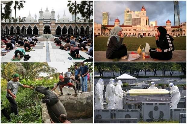 Интересные кадры из Малайзии