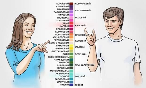 10. Женщины лучше мужчин различают цвета, поскольку цветоразличение напрямую связано с Х-хромосомой. женщина, интересное, тело, факты