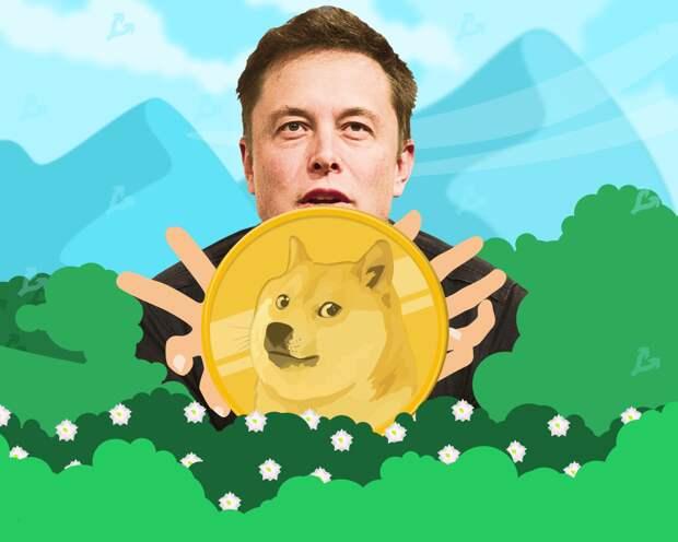 Разработчики Dogecoin рассказали, что сотрудничают с Илоном Маском с 2019 года