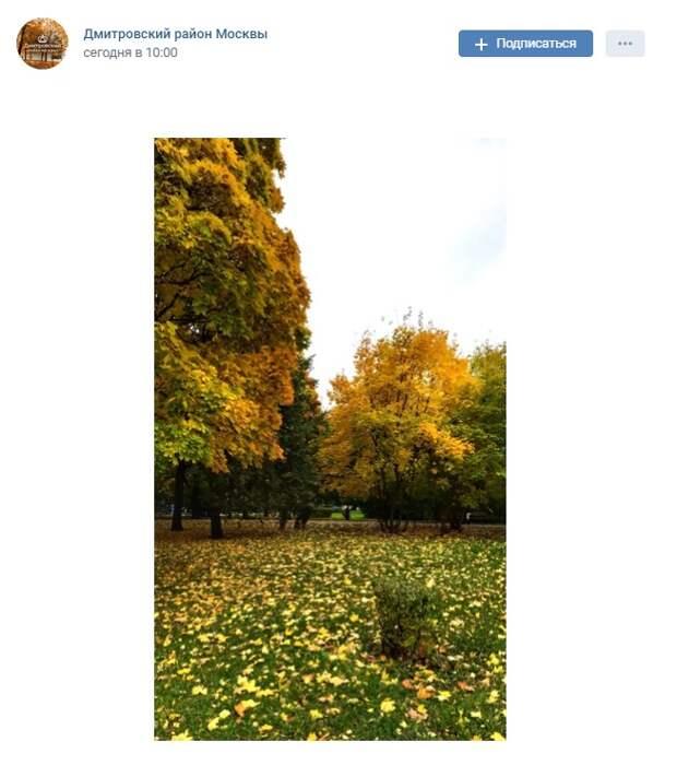 Фото дня: золотая осень в парке «Ангарские пруды»