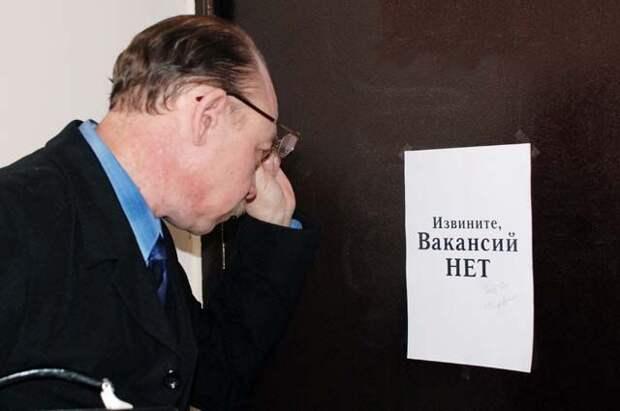 Россияне смогут получить услугу по поиску работы в электронном виде