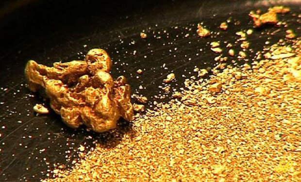 Золотые лихорадки, которые свели мир с ума