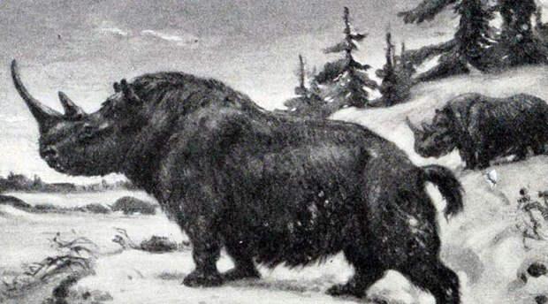 10 существ, которых ученые хотят вернуть из небытия