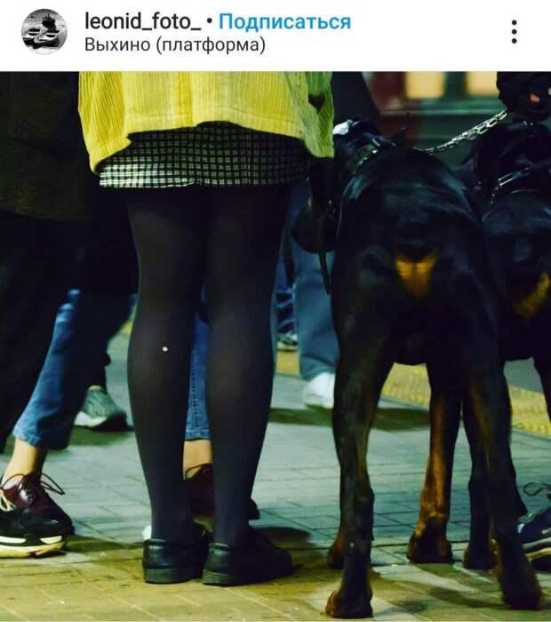 Фото дня: самые красивые ноги Выхина-Жулебина