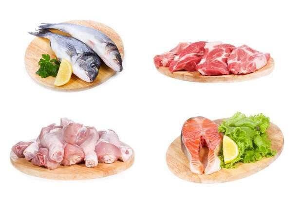 Рыба или мясо: что полезнее для организма?