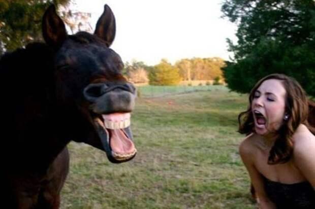 Смешные фото приколы для хорошего настроения (11 фото)