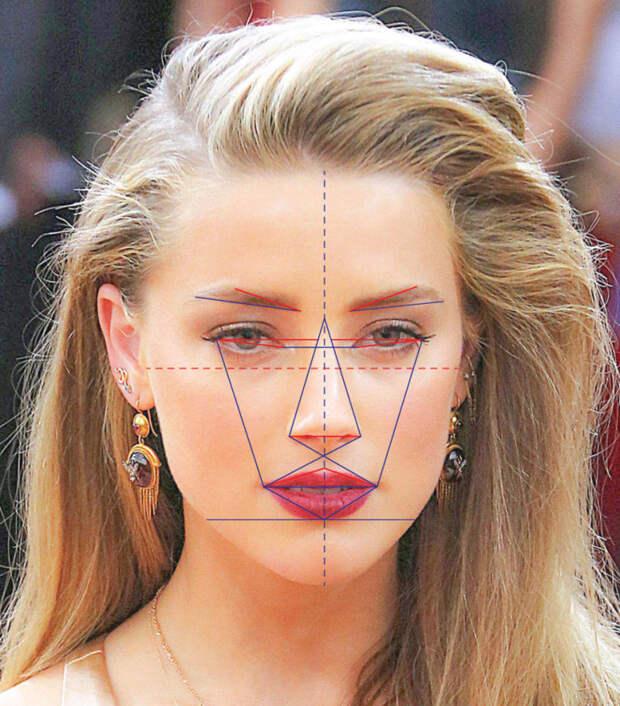 """Например, Эмбер Хёрд на 91,85% приближена к идеалу греческого """"золотого сечения"""", вычисление которого выглядит вот так   исследование, красота, лицо"""