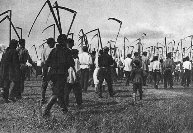 Колхозники идут к месту своей работы. СССР. 1929 год. история, ретро, фото