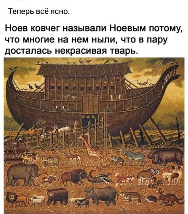 На изображении может находиться: текст «теперь всё ясно. ноев ковчег называли ноевым потому, что многие на нем ныли, что в пару досталась некрасивая тварь. הR»