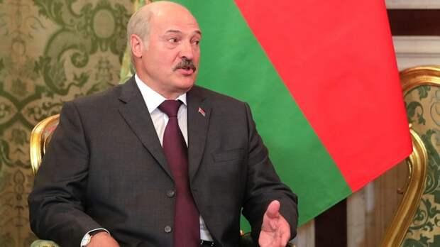 Белорусский фермер показал Лукашенко свою телочку