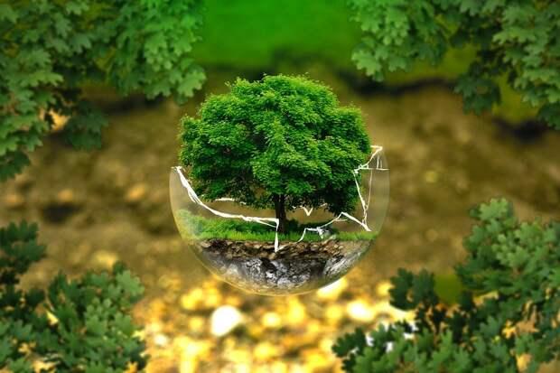 Охрана Окружающей Среды, Охрана Природы, Экология, Эко