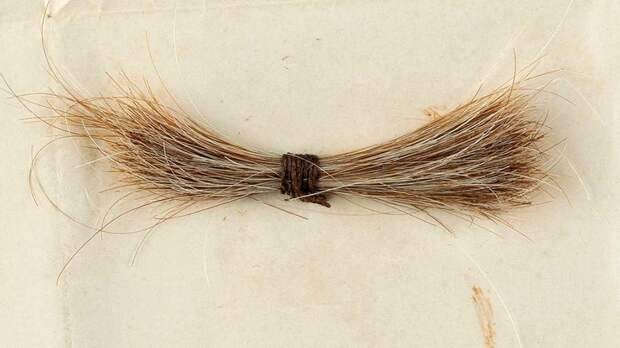 Прядь волос Авраама Линкольна продали на аукционе в США за $81 тысячу