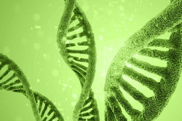 Генетическая энциклопедия