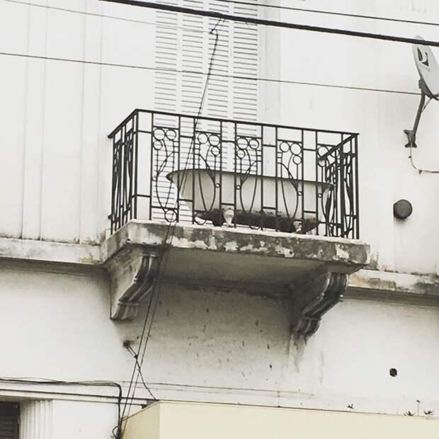 Фото сделано в Испании. Видимо у них бывает очень жарко балкон, балконы, на балконе, прикол, че за хрень на балконе?, юмор