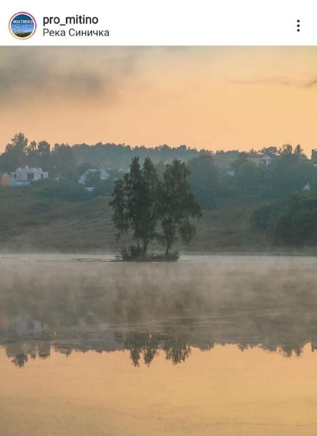 Фото дня: прекрасное туманное утро