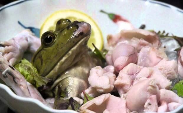 strange food-4
