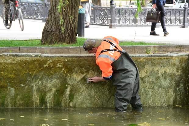 В Екатерининском саду Симферополя очищают искусственные пруды