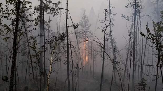 Особый противопожарный режим ввели в Оренбургской области с 13 мая