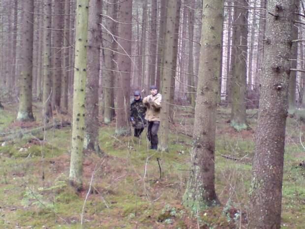 Вадим Михайлов осматривает проход в закрытый лес.